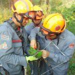 CCR AutoBAn e Corpo de Bombeiros resgatam maritaca presa à linha de pipa